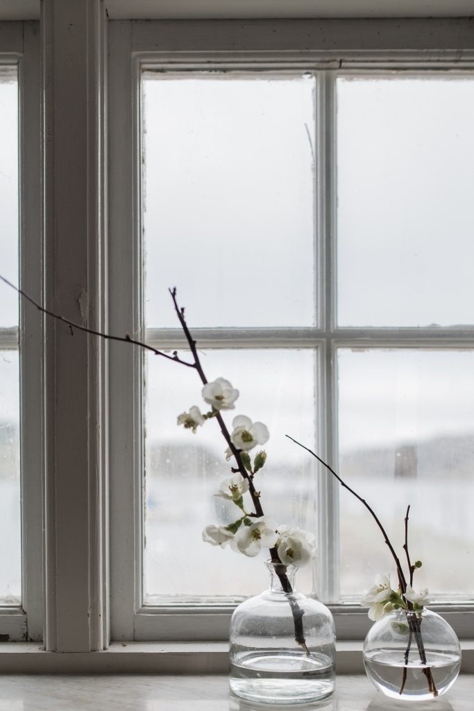 fönster fotoskola ljus midbec tapeter